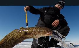 Ice Fish Michigan
